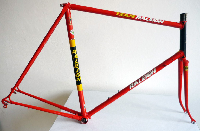 raleigh-team-replica
