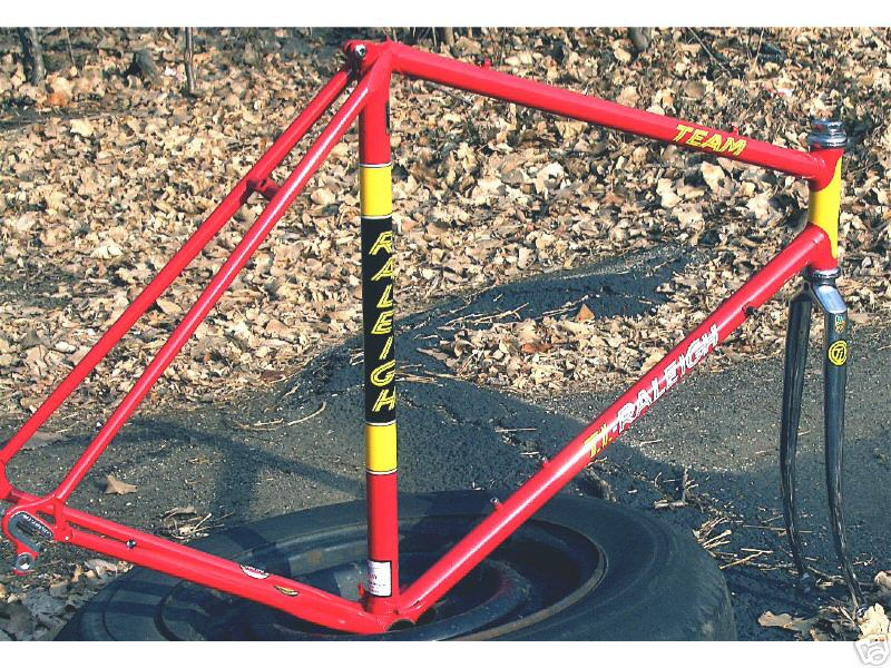 raleigh-team-repainted.jpg