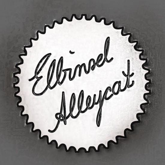 elbinsel-alleycat-hamburg-2013_radpropaganda