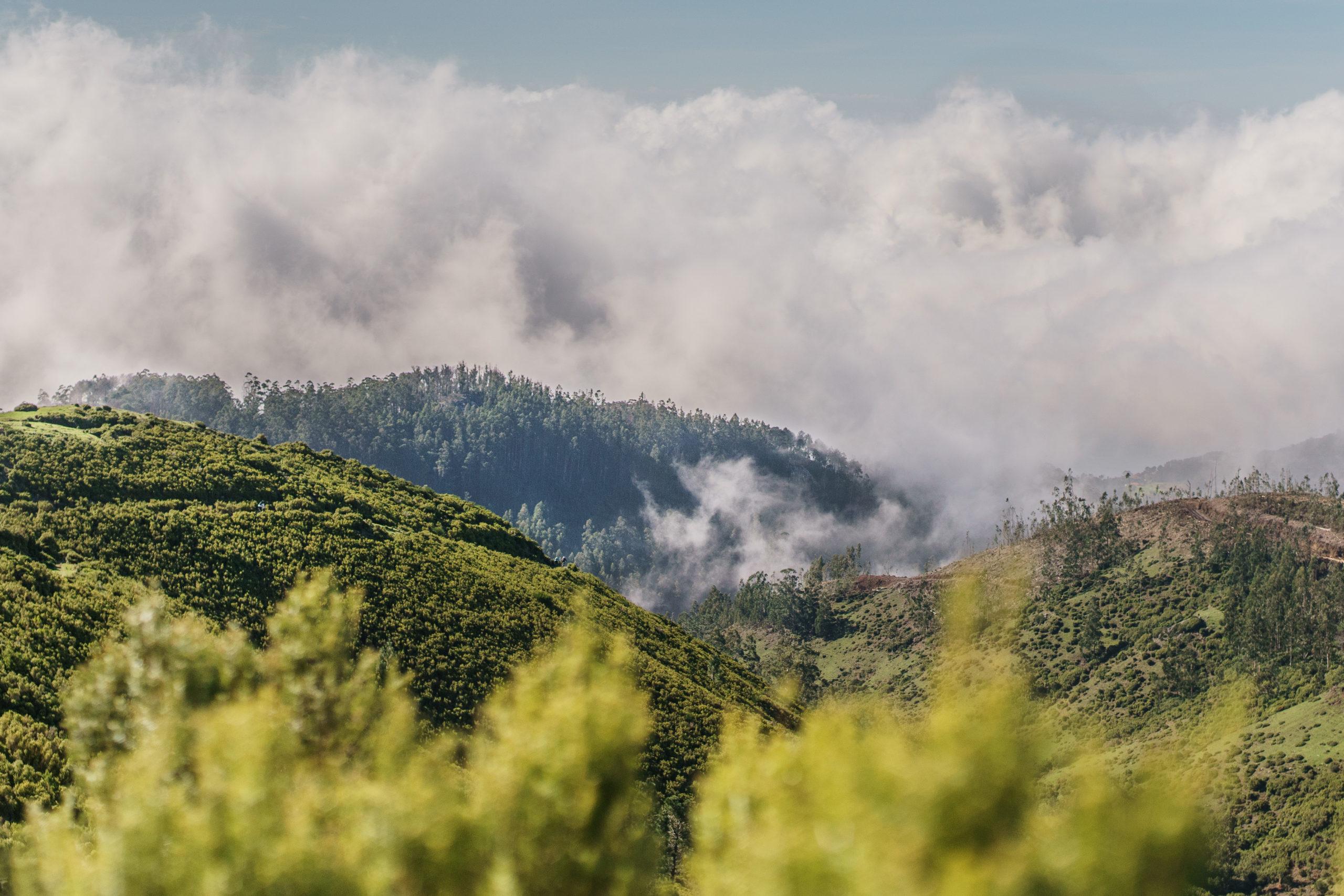SANDOKAN Enduro, Madeira