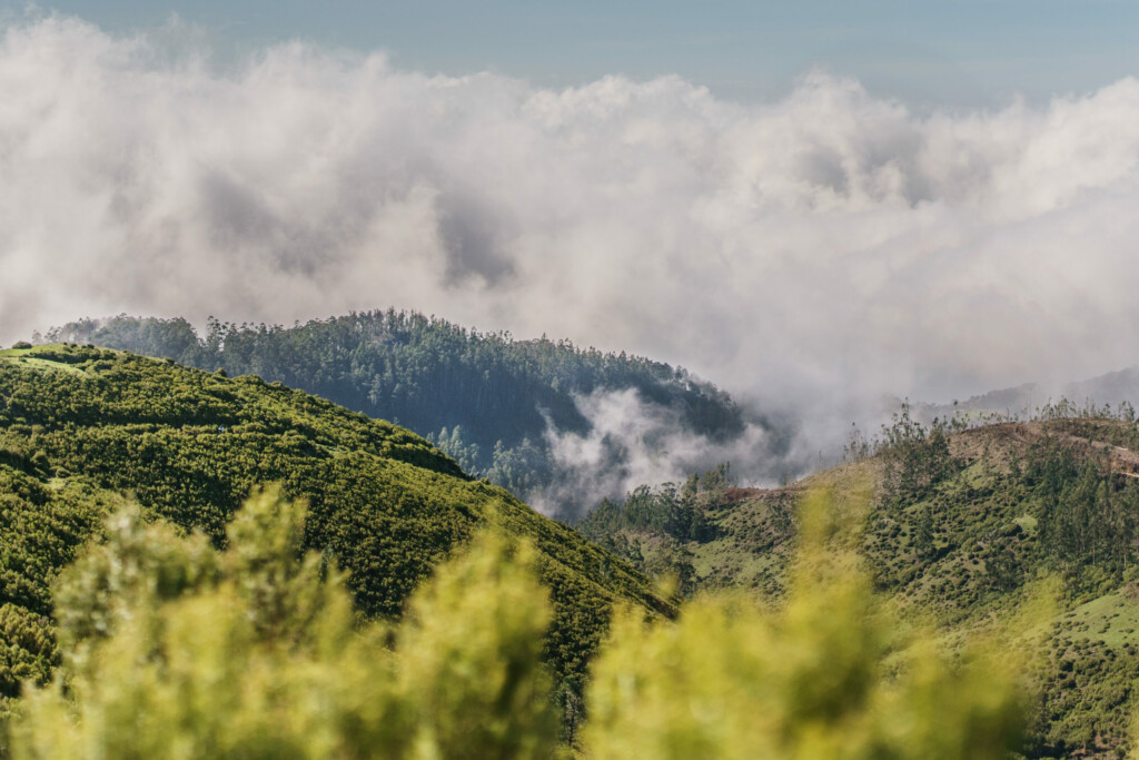 sandokan trails, enduro race @ madeira island