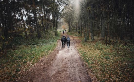 Eine Reise ins dunkle Herz der Heide - 130km Rennrad Tour zum Ahrberg http://aufzum.ahrberg.cc